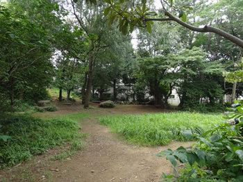 くさっぱラ公園