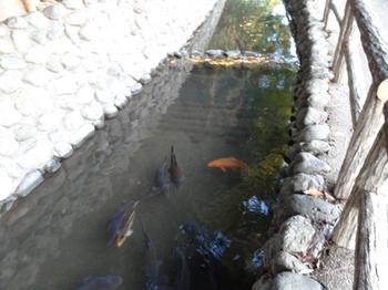 六郷用水3.png