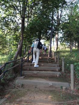 多摩川台公園散策.png