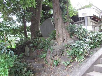 居木橋遺跡と富士塚付近