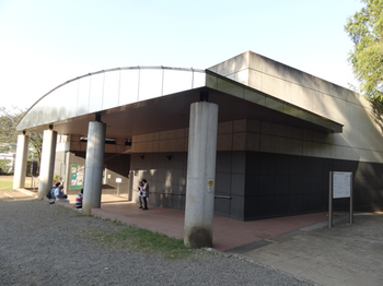 多摩川台公園古墳展示室1.png
