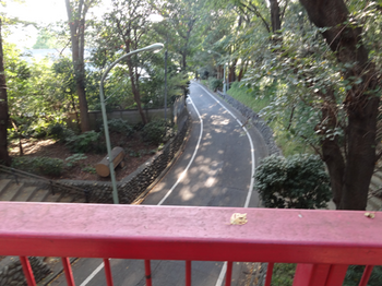 多摩川台公園虹橋3.png