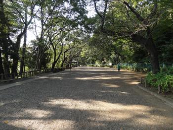 多摩川台公園見晴らし台.png