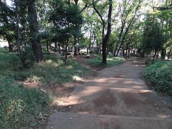 宝来公園2.png