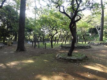 宝来公園4.png