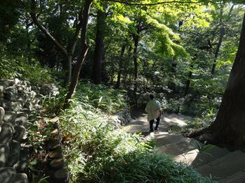 宝来公園5.png