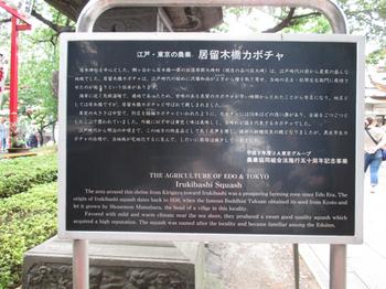 居木橋かぼちゃ標識