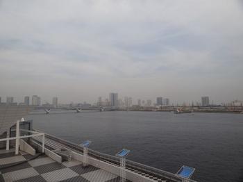 晴海2.png