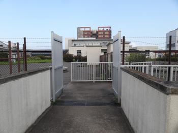 海老取川公園、階段を登ったところ.png